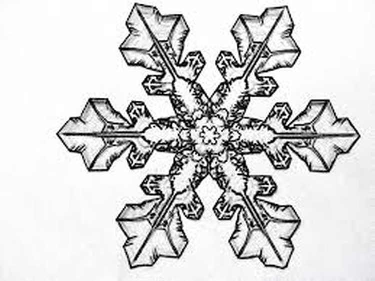 Snowflake Paper Quilling