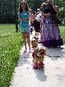 Pet Parade 2007 :: Click to see a larger version