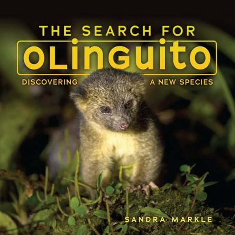 The Search for Olinguito: Discovering a New Species