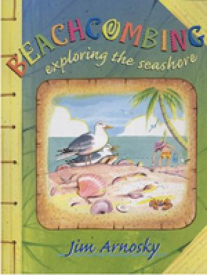 Beachcombing: Exploring the Seashore