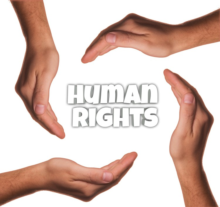 Tonight: Human Rights Program In-Person and Online!