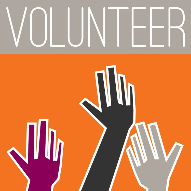 All Ages Volunteer Fair Today