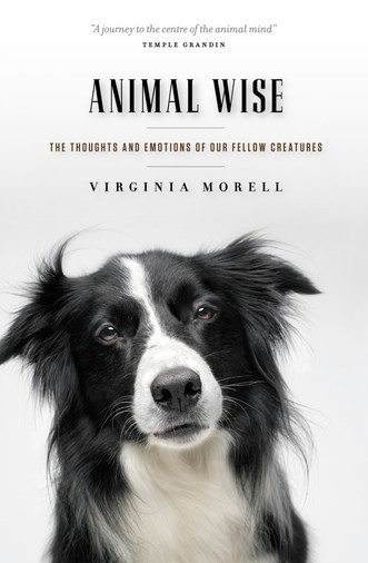 Tonight's Book Discussion: Animal-Wise