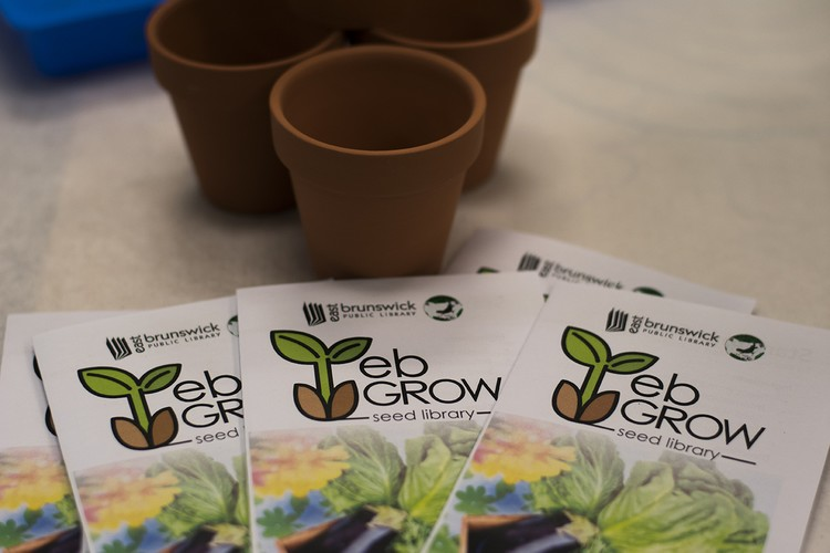 "East Brunswick Public Library Launches ""EB Grow"" Seed Library"