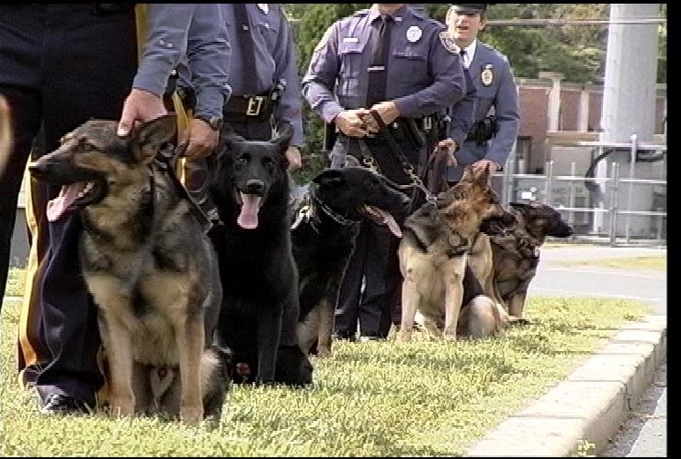 NJ State Police Canine Unit