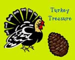 Turkey Treasure