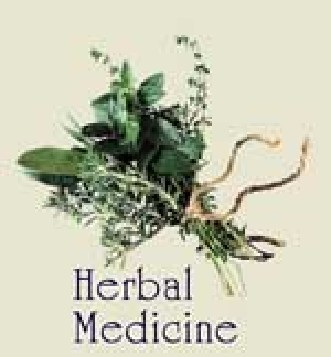 Learn About Herbal Medicine
