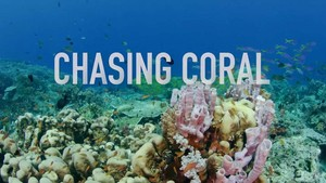 Documentary: Chasing Coral
